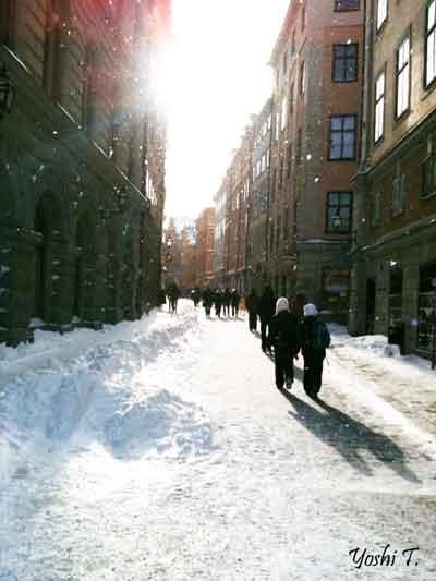 sweden_winter_feb_2010.jpg